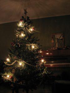 Kerstboom, versierd, verlicht, gratis thuisbezorgd